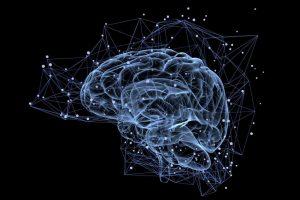 Apa Itu Neural Network